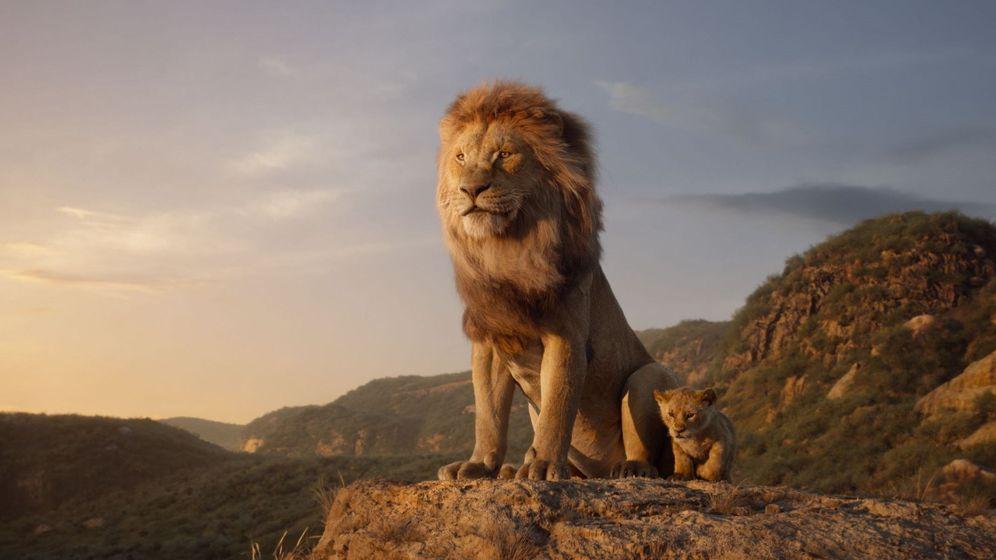 Foto: Ni rey ni león: así sería la película de Disney si fuera fiel a la realidad (EFE)