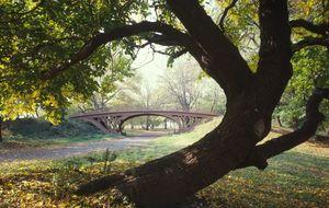 Cinco parques para hacer running