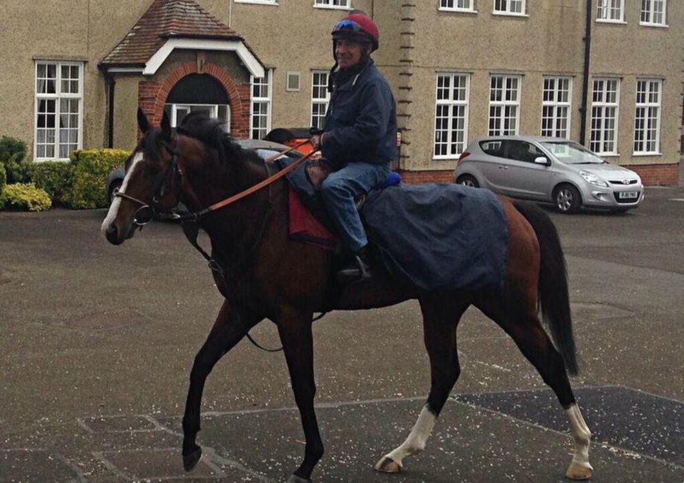 Foto: 'Noozhoh Canarias' en Inglaterra (Newmarket Racehorse).