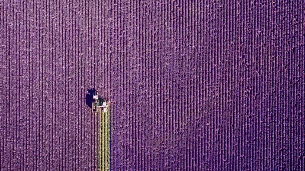 Estas son las doce mejores fotografías del año realizadas desde un dron