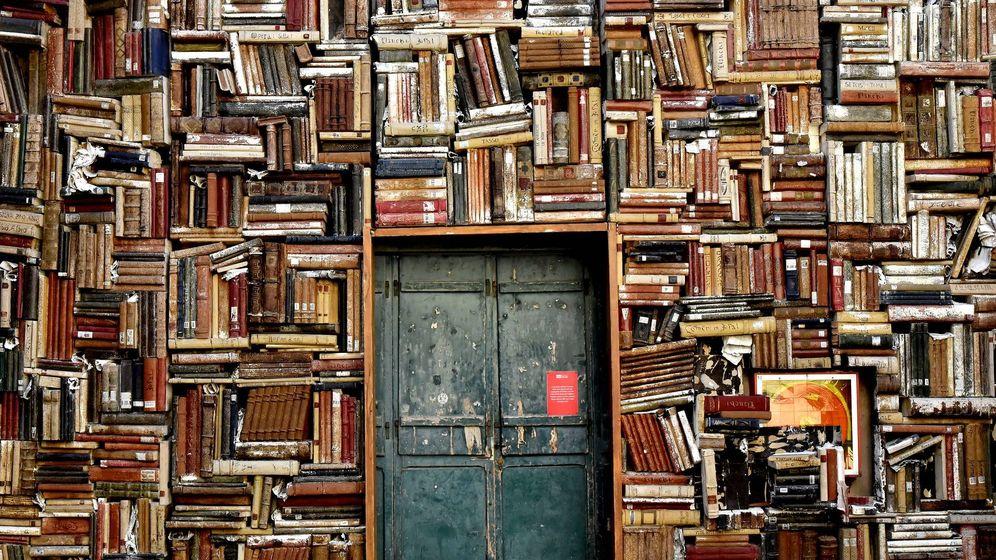 Foto: Una estantería atestada de libros. (Pixabay)