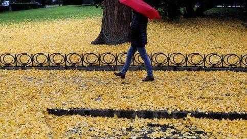 Inversor, prepare su cartera para otoño: qué valores hay que seguir en octubre