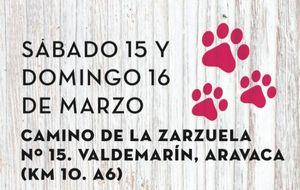 Lafundación de Paco Arango se une al Huella Market de Aravaca
