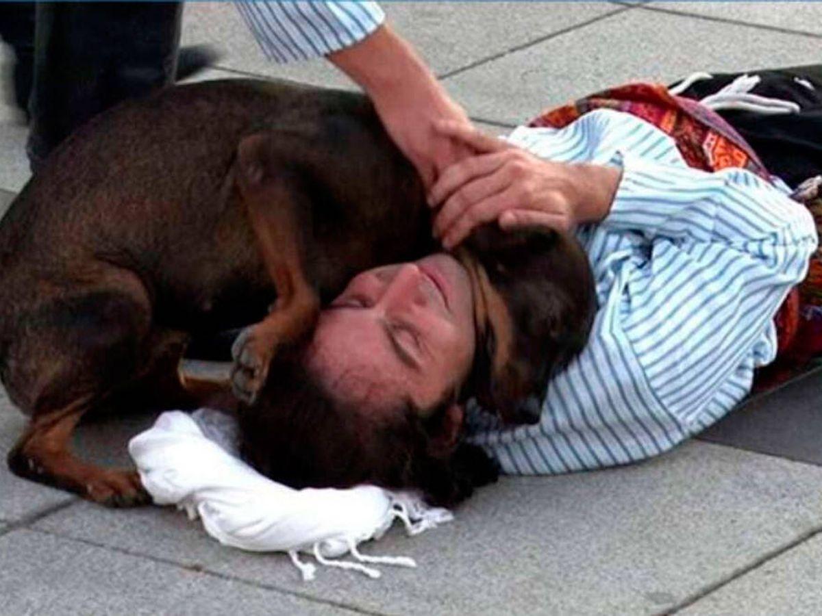 Foto: El perro se colocó sobre el actor para transmitirle su calor (YouTube)