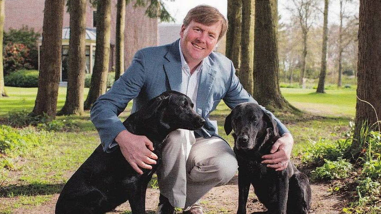 Guillermo y sus perros.