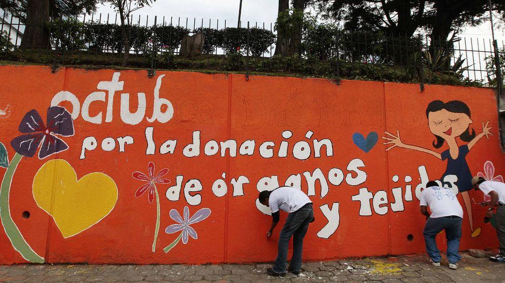 Foto: Ecuador duplica la donación de órganos | EFE