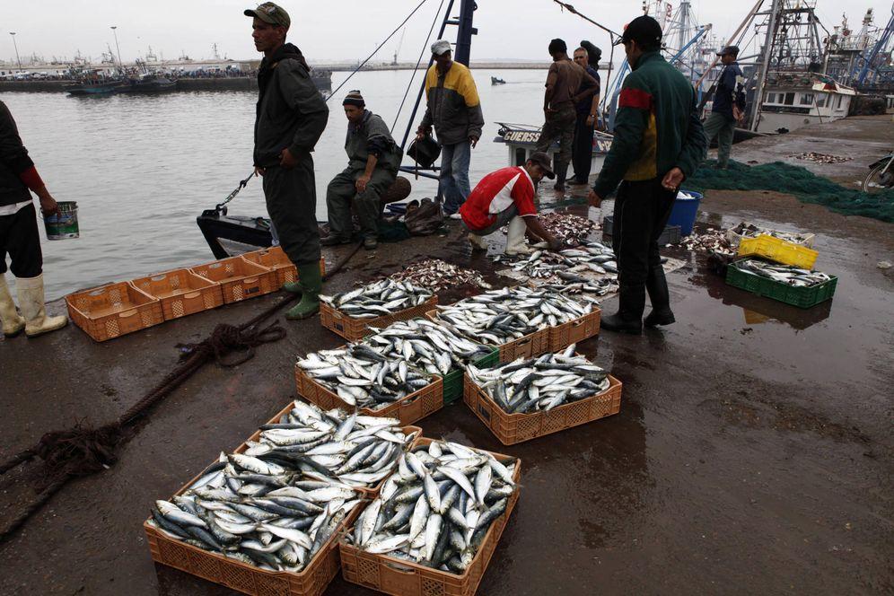 Foto: Pescadores marroquíes en Agadir, al sur de Marruecos. (Reuters)