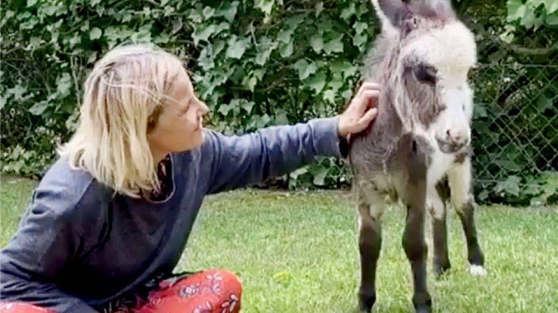 La historia detrás de la nueva mascota (un burro) de Eugenia Martínez de Irujo