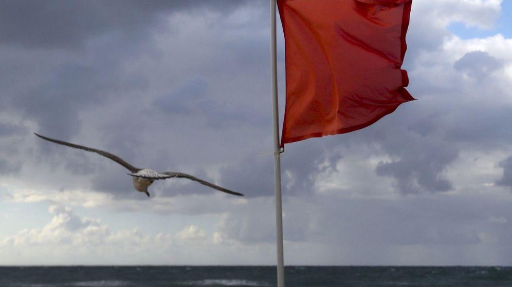 Foto: Una gaviota vuela junto a una bandera roja en la playa de la Zurriola de San Sebastián. (EFE)