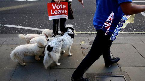 'Bregret': los que se arrepienten de haber votado por el Brexit