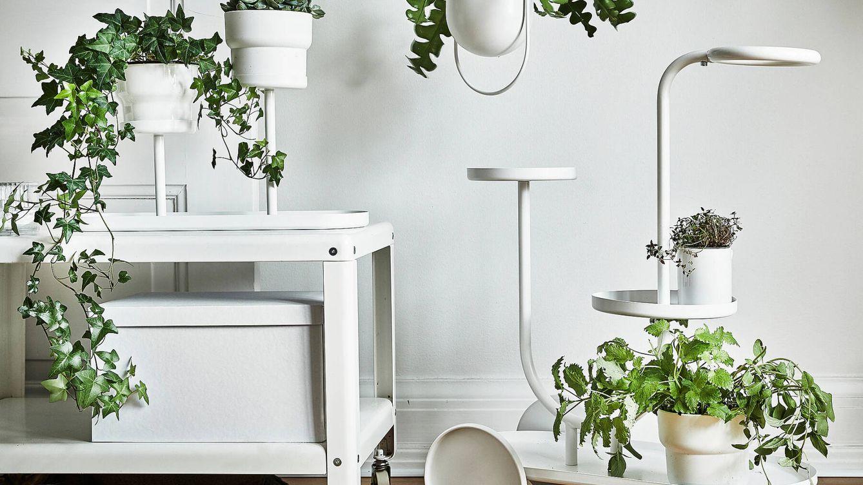 El nuevo soporte para macetas de Ikea y otras opciones igual de originales