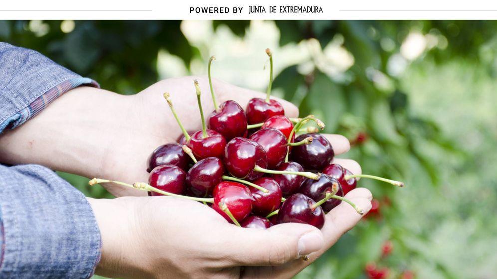 Foto: Las cerezas del Jerte forman parte de los alimentos extremeños con Denominación de Origen Protegida. (Cortesía)
