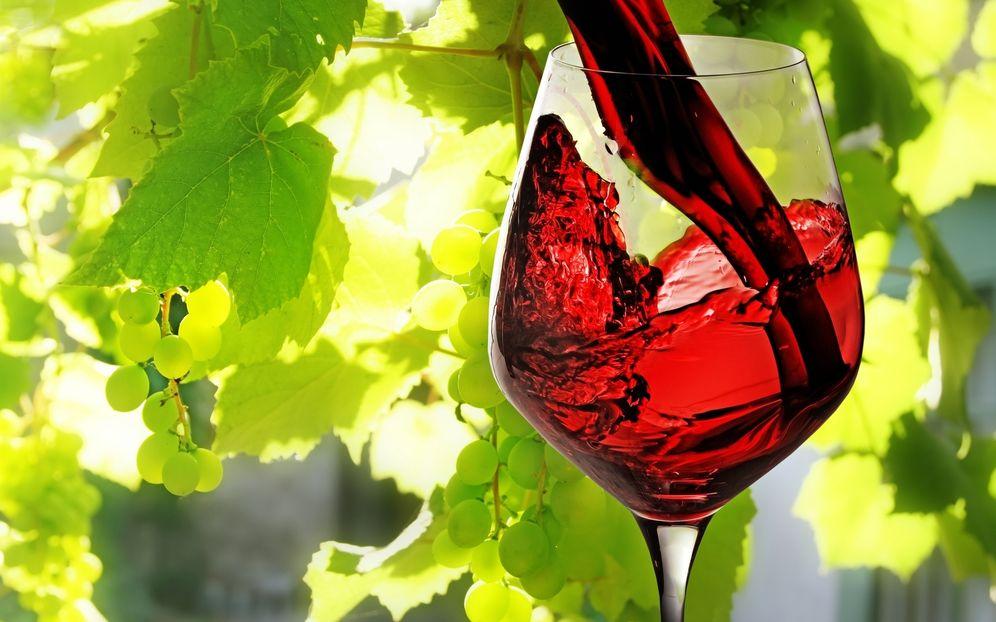 Foto: España es líder en exportaciones de vino.