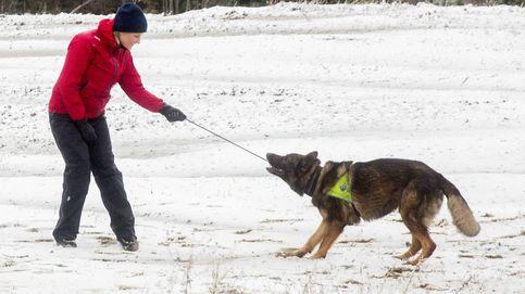 La divertida escena de Mette-Marit y el perro que no quería ir con ella