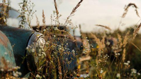 Una colección de coches 'retro' en Rusia