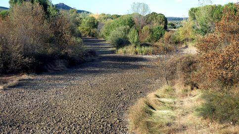 Más de la mitad de los ríos y arroyos de la Tierra ya se secan durante parte del año