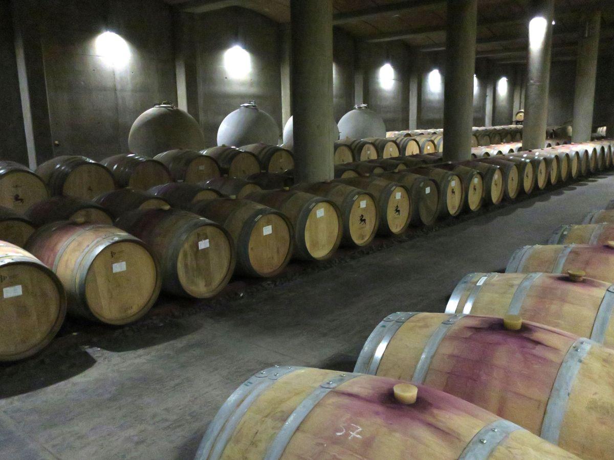 Foto: Bodega de vino