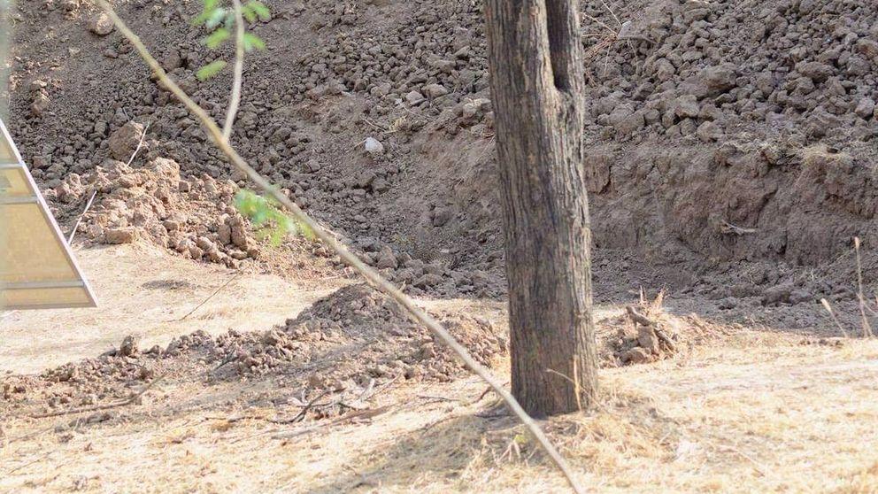 El reto viral más difícil: ¿eres capaz de encontrar al leopardo que hay en esta foto?