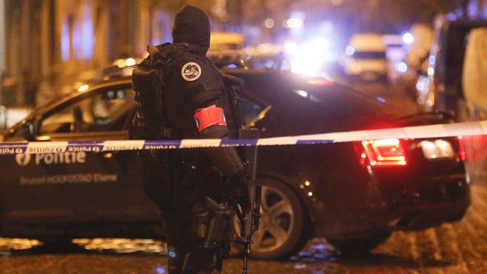 Los belgas inundan Twitter con fotos de gatos para evitar pistas a los yihadistas