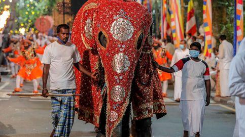 Procesión budista en Colombo