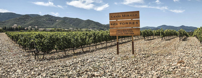Foto: Las fincas donde nacen estos grandes vinos son enclaves privilegiados.