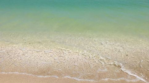 Llega el primer probiótico del mar y es español