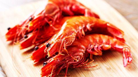 Gamba roja de Dénia: cómo cocinar la joya del Mediterráneo
