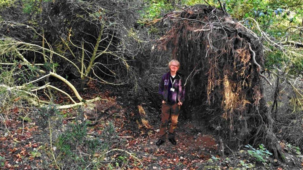 Una 'eco casa' prehistórica junto a Stonehenge, más antigua que él