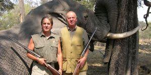 Foto: El Rey sufrió un estallido de fémur durante su viaje de caza a Botsuana