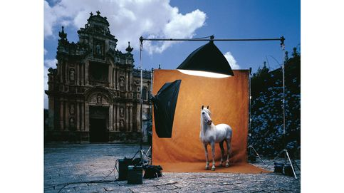 Purasangre: la devoción por el caballo español en el mundo