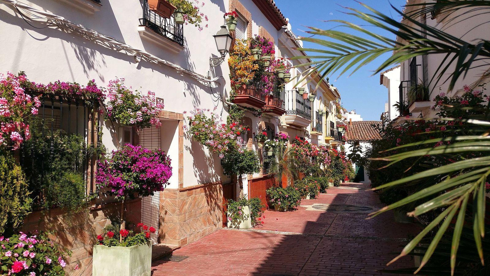 Foto: El tiempo en Estepona. (C.C./Turista inglesa)