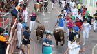 La crisis y la política apuntillan los toros: los festejos bajan el 40% en una década