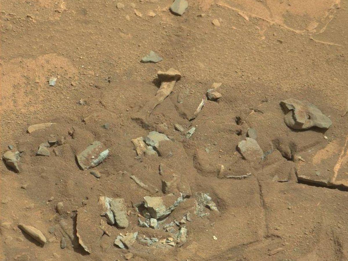 Foto: ¿Huesos en Marte? Fuente: Twitter.