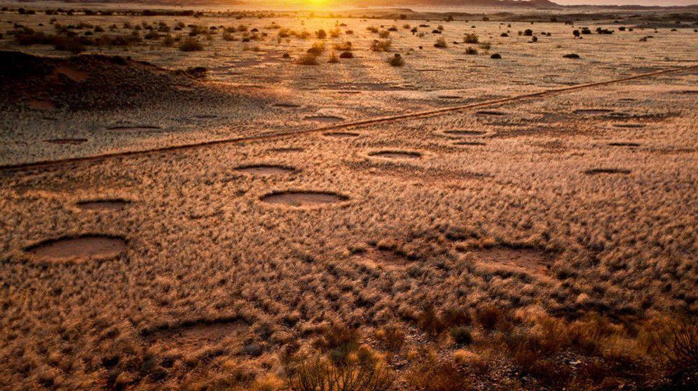 Foto: Los círculos de Namibia.