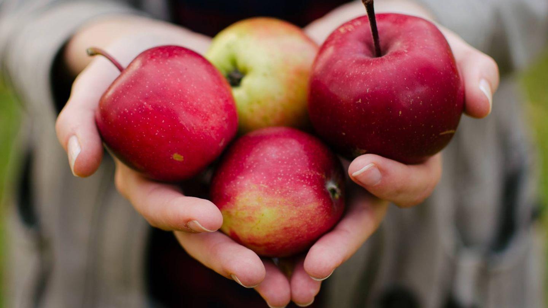 Puedes añadir manzana para endulzar tus platos. (Aarón Blanco Tejedor para Unsplash)
