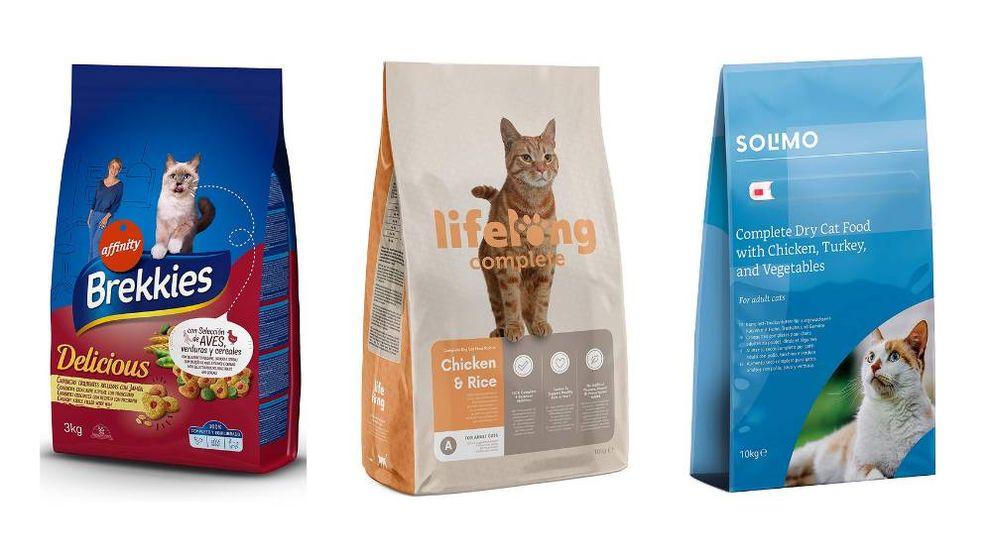 Los mejores piensos para gatos en alimentación seca