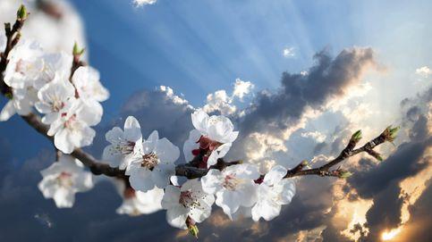 Cómo evitar que se escapen los instantes preciosos de nuestra vida