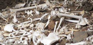 Post de El hallazgo del siglo en Canarias: encuentran intacta una cueva funeraria prehispánica