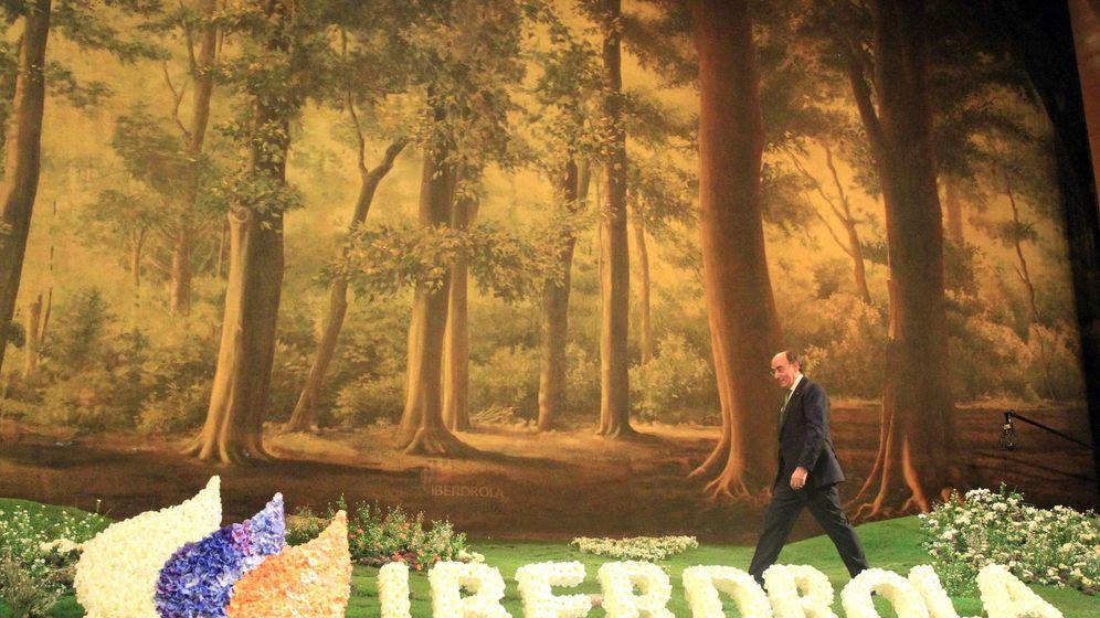 Foto: El presidente de Iberdrola, Ignacio Galán. (EFE)