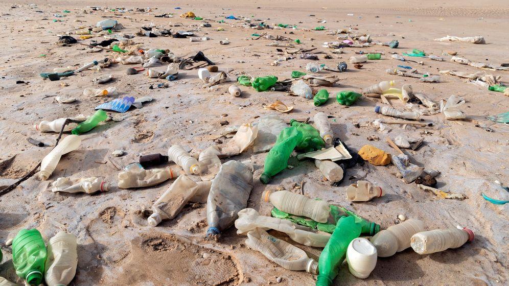 Foto: Los plásticos están cada vez más presentes en la naturaleza. (EFE)