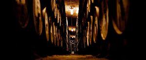 La Ruta del Whisky, una nueva experiencia turística en Segovia