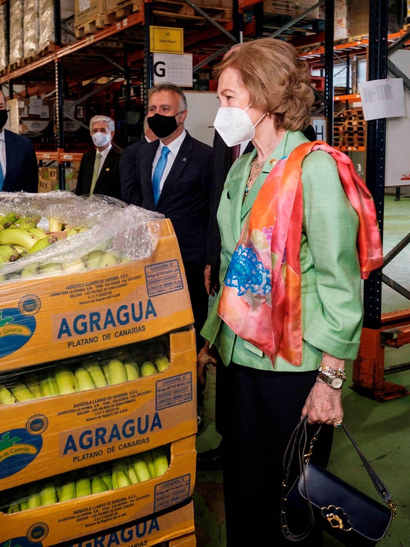 La reina Sofía, en un Banco de Alimentos. (EFE)