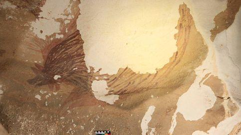 El ejemplo de arte rupestre más antiguo del mundo está desapareciendo a causa de la crisis climática