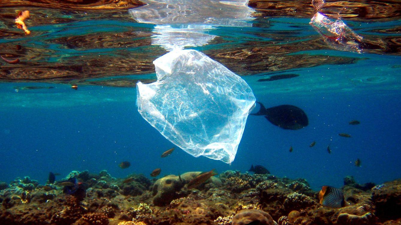 Alemania prohíbe el uso de bolsas de plástico desechables a partir de 2022