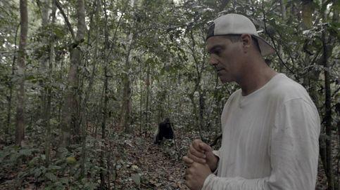 Frank Cuesta mostrará la triste situación de los gorilas, desde el 29 de abril