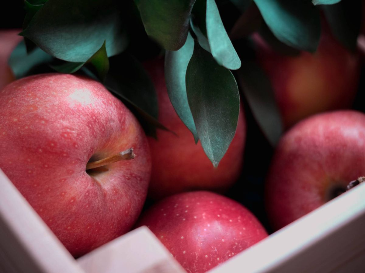 Foto: Adelgaza comiendo las manzanas con piel. (Гульшат Бадалова para Unsplash)