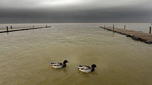 La Albufera aumenta su nivel de agua tras Gloria