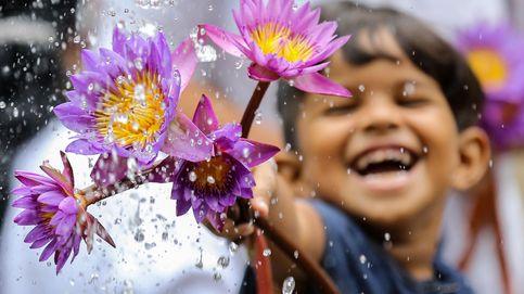 Las escuelas en Wuhan reabren y celebración religiosa en Sri Lanka: el día en fotos