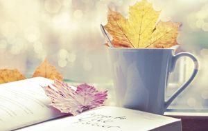 Las mejores librerías-café para románticos del papel