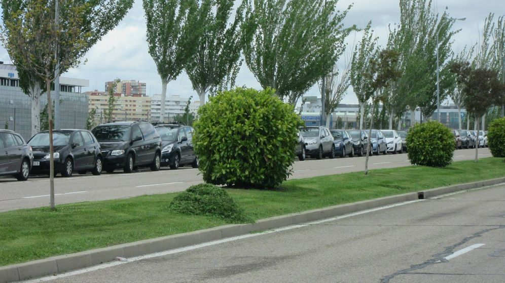 Foto: 65% de multas por aparcamiento